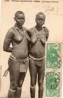 SENEGAL FEMMES DIOLAS  SEINS NUS - Afrique Du Sud, Est, Ouest