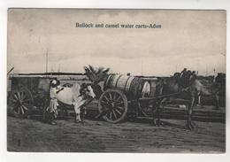 6999, Bullock And Camel Wader Carts, Aden, Ochsen- Und Kamelwasserwagen-Aden - Postcards