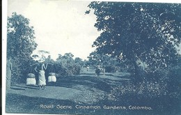 ROAD SCENE - CINNAMON GARDENS  - COLOMBO - CEYLON - Sri Lanka (Ceylon)