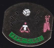 65381-Pin's-Le Foyer D'éducation Populaire Et Sportive .judo.volley.gymnastique.chorale.danse. - Villes