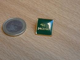 JAGUAR. - Jaguar