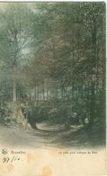 Bruxelles 1910; Le Petit Pont Rustique Au Bois - Voyagé. (Nels - Bruxelles) - Bossen, Parken, Tuinen