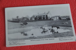 Yorkshire Sewerby Raper's Danes Dyke Farm NV Ketchell Collection Hull - Other