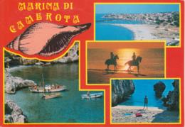 MARINA DI CAMEROTA - VEDUTINE MULTIVUES - CONCHIGLIA SHELL COQUILLE - VIAGGIATA 1990 - Italia