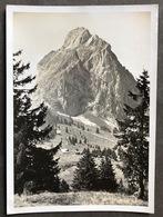 Holzegg Mit Grossem Mythen/ Gestempelt In Luzern - SZ Schwyz