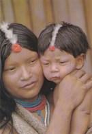 Indiens Du Haut-Oyapock Et De La Région Du Tumuc-Humac - Guyane