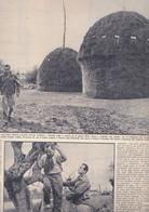 (pagine-pages)ERCOLE BALDINI  Oggi1957/49. - Livres, BD, Revues