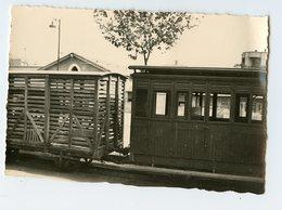 TRAIN Gare De Palma 50s Rare Wagon Detail - Trains