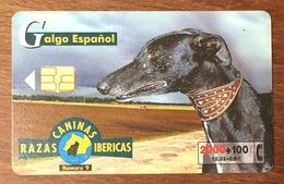 ESPAGNE RAZAS CANINAS IBÉRICAS GALGO ESPANNOL LEVRIER TARJETA TELEFONICA PAS TÉLÉCARTE PHONECARD - Spanje