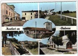 Carte Postale  40. Montfort-en-Chalosse  Très Beau Plan - Montfort En Chalosse