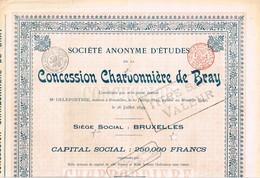 Titre Ancien - Société Anonyme D'Etudes De La Concession Charbonnière De Bray - Titre De 1899 - Mines