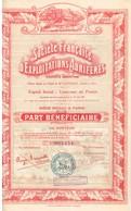 Titre Ancien - Société Française D'Exploitations Aurifères - Société Anonyme - Titre De 1928 - Déco - - Mines
