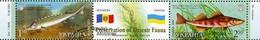 Ukraine 2007 Mi.No. 894 - 895 Joint Issues MOLDOVA FISHES  Fauna Des Dnjestr  2v CTO  3.30 € - Joint Issues