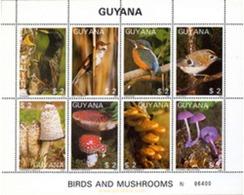 Ref. 213488 * MNH * - GUYANA. 1988. FAUNA AND FLORA . FAUNA Y FLORA - Guiana (1966-...)