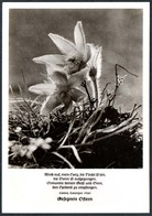 D6521 - TOP Fotokunst Herbert Linde - Spruchkarte Lorenz Lorenzen - Verlag Max Keßler - Autres