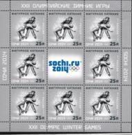 Russia 2014 Sochi Olympic Games - Figure Skating Minisheet MNH/** (H59E-LARGE) - Inverno 2014: Sotchi