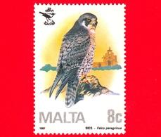 Nuovo - MNH - MALTA - 1987 - 25 Anni Della Società Ornitologica Di Malta - Uccelli - Birds - Falco - 8 C - Malta