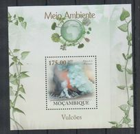 H378. Mozambique - MNH - 2010 - Nature - Volcanoes - Bl - Vegetales