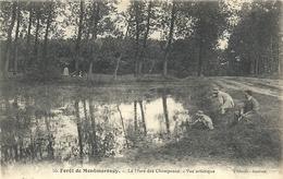 2020 - 06 - VAL D'OISE - 95 - MONTMORENCY - La  Mare Des Champeaux - Montmorency