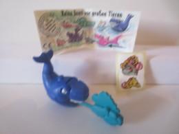 Kinder Surprise Deutch 1996 N° 656 542 + BPZ + Stickers - Montables