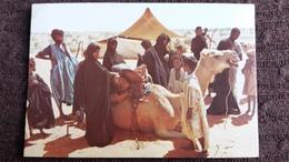 CPSM MAURITANIE CAMPEMENT NOMADE 1978 ED DELROISSE  CHAMEAU ANIMATION - Mauritanie