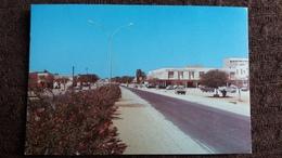 CPSM MAURITANIE NOUAKCHOTT LA CAPITALE ED DELROISSE 1978 FLEURS AUTO - Mauritanie