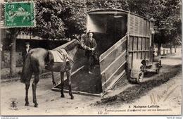 78 MAISONS LAFFITTE - Embarquement D'un Cheval En Van - Maisons-Laffitte