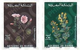 Ref. 95489 * MNH * - MOROCCO. 1995. MOROCCAN FLORA . FLORA MARROQUI - Marokko (1956-...)