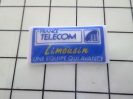 115A Pin's Pins / Beau Et Rare / THEME : FRANCE TELECOM / Céramique Ou Porcelaine Limoges LIMOUSIN UNE EQUIPE QUI AVANCE - France Telecom