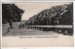 Cpa Vallee De La Meuse - Le Halage Des Bateaux A Waulsort - Hastière