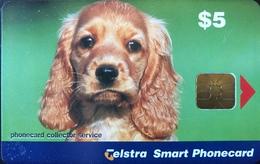 AUSTRALIE  -  Phonecard   -  Telstra Smart Phonecard  -  Dog, Cocker Spaniel Pup - Australië