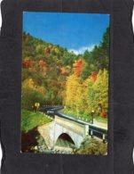 94488    Stati  Uniti,   Cold  River  Bridge,  Mohawk  Trail,  Massachusetts,  NV - Estados Unidos
