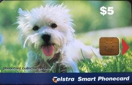 AUSTRALIE  -  Phonecard   -  Telstra Smart Phonecard  -  Dog, Terrier Pup  -  $ 5 - Australië