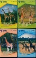China Telecom Chip Cards, Giraffe, Fujian Province, (4pcs) - China