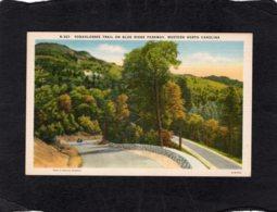 94497   Stati  Uniti,   Yonahlossee  Trail On Blue Parkway,  Western North Carolina,  NV - Estados Unidos