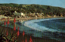E 0536 - USA  Californie   Laguna Beach - Estados Unidos