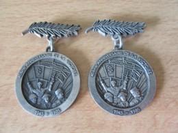 2 Médailles / Broches - 40ème Anniversaire De La Victoire 1945 / 1985 - Avec Palmes - Métal - France
