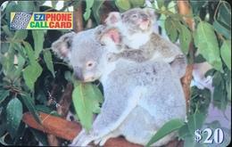 AUSTRALIE  -  Prepaid  -  EZIPHONE CALCARD   - Koalas  -  $ 20 - Australië