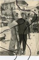 PHOTOGRAPHIE. OURS BLANC Déguisé Avec Des Skis En Mains A Cote D'une Femme . Devanture Magasin Oreiller Sports . - Photographs