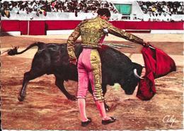 1432 - Travail De Muleta : Pasa Por Alto. Torero JUMILLANO - Corridas