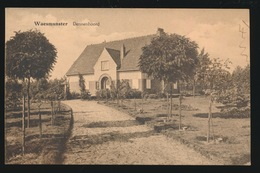 WAASMUNSTER  DENNENHOORD - Waasmunster