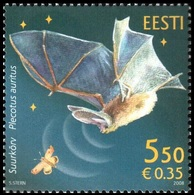 708 - Estonia - 2008 - Estonian Fauna The Bat - 1v - MNH - Lemberg-Zp - Estonie