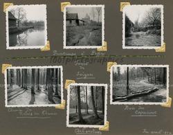 """"""" Printemps à Pede,; Forêt De Soignes - Bois De Capucins - Chemin Du Relais"""" 5 Photographies Originales D'époque. FG1422 - Places"""