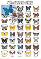 4497 - SÉRIE NATURE : LES PAPILLONS MORPHO BLEU -1ER JOUR AU 3-9-2010  - HAUTE-GOULAINE (44) TB - Cartas Máxima
