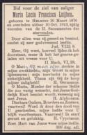 Maria Lucia Francisca Luijben, Helmond, 1876-1913 - Devotion Images