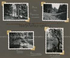 """""""Dans Le Bois Des Capucins - Vossem - Tervueren - Saint-Hubert"""".  4 Tirages Originaux D'époque FG1431 - Places"""