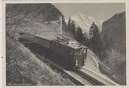 Schynige-Platten-Bahn Oberhalb Von Wilderswil - Schöne Grossaufnahme       (P-247-00201) - Trains