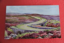 Yorkshire Goathland Moors Ellerbeck NV - England