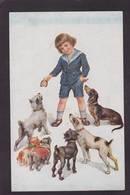 CPA Teckel Dachshund Dackel Non Circulé - Dogs