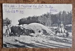 Carte Postale Ancienne : Mission Des P. P. Capucins - Arménie - Battage Du Blé (armée Du Levant - 1919) - Armenia